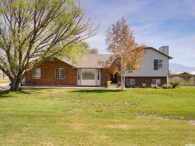 590 S 6700 W, Ogden, UT 84404 (#1699070) :: Big Key Real Estate