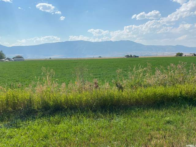 Address Not Published, Preston, ID 83263 (#1699083) :: Utah Best Real Estate Team | Century 21 Everest