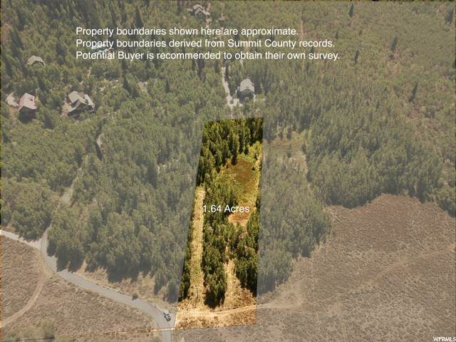 3809 Conifer Dr, Oakley, UT 84055 (#1699104) :: Big Key Real Estate