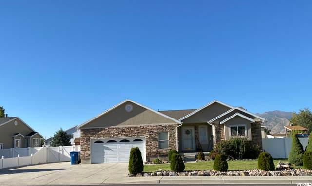 3131 E Canyon Crest Dr, Spanish Fork, UT 84660 (#1699304) :: Bustos Real Estate | Keller Williams Utah Realtors