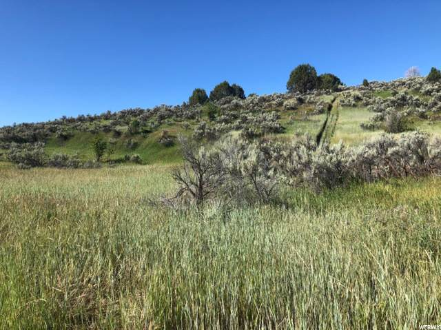 Address Not Published, Lava Hot Springs, ID 83246 (#1699724) :: goBE Realty