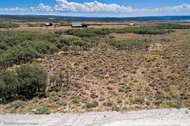 64 N No Porcupine Ln #10, La Sal, UT 84530 (#1699837) :: Big Key Real Estate