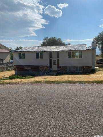 89 Left Hand Canyon Rd Rd, Georgetown, ID 83239 (#1699890) :: McKay Realty