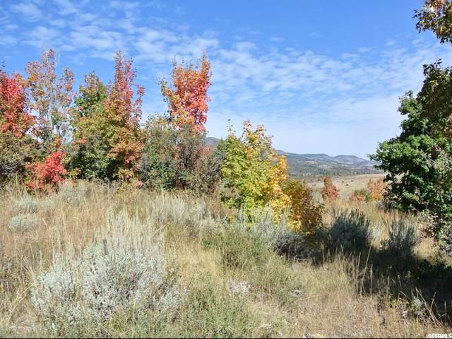 665 S Balsamorhiza Rd, Garden City, UT 84028 (MLS #1700069) :: Lookout Real Estate Group