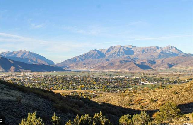 2353 E La Sal Peak Dr, Heber City, UT 84032 (MLS #1700771) :: Lookout Real Estate Group