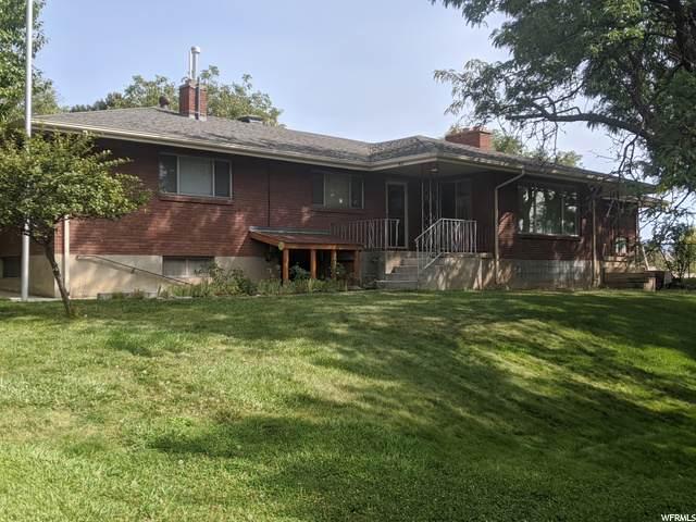 910 E Grove Creek Dr N, Pleasant Grove, UT 84062 (#1701407) :: McKay Realty