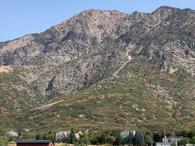 4426 N 250 W, Pleasant View, UT 84414 (#1702180) :: Utah Best Real Estate Team   Century 21 Everest