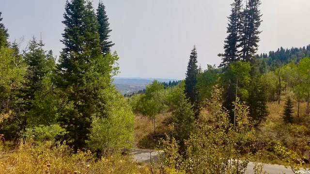 1560 W Tollgate Canyon Rd, Wanship, UT 84017 (MLS #1702227) :: High Country Properties