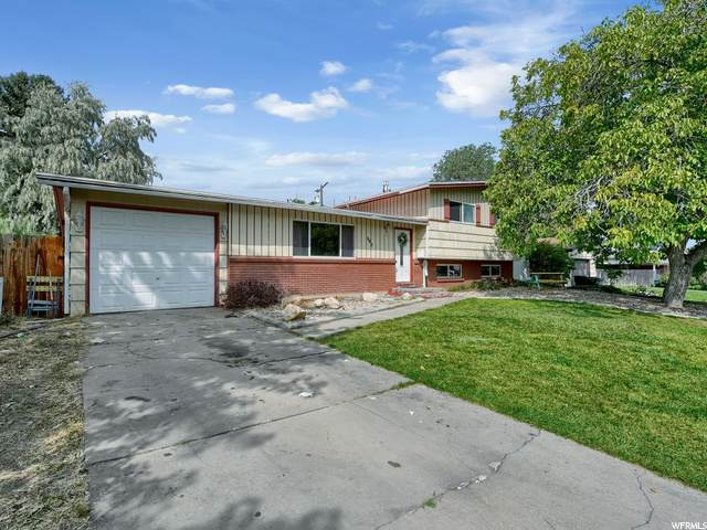 645 Nelson Ave N, Tooele, UT 84074 (#1702328) :: Colemere Realty Associates
