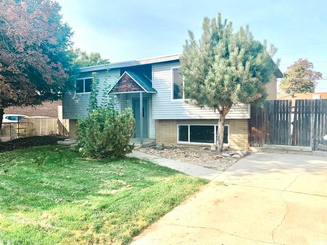 648 W Ivy Dr, Midvale, UT 84047 (#1702329) :: Colemere Realty Associates