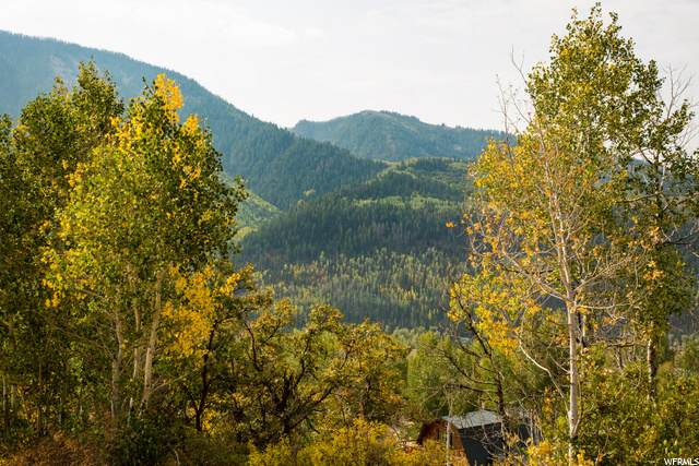 Address Not Published, Oakley, UT 84055 (MLS #1702691) :: High Country Properties