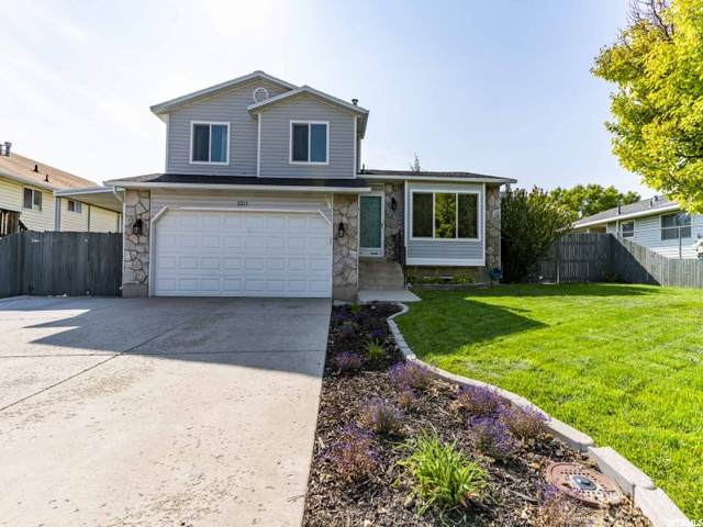 5215 W Wake Robin Dr, West Jordan, UT 84081 (#1703549) :: Gurr Real Estate