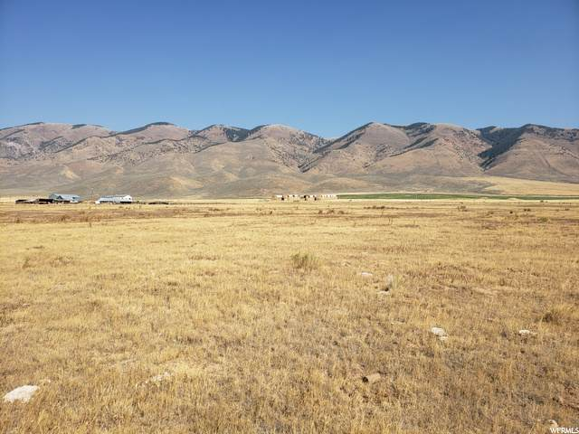 31 Hwy 30, Cokeville, WY 83114 (MLS #1703558) :: Lawson Real Estate Team - Engel & Völkers