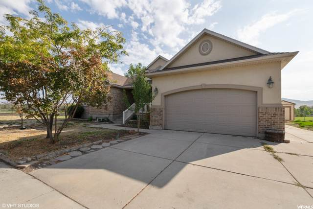 1846 Cavallo Dr - Photo 1