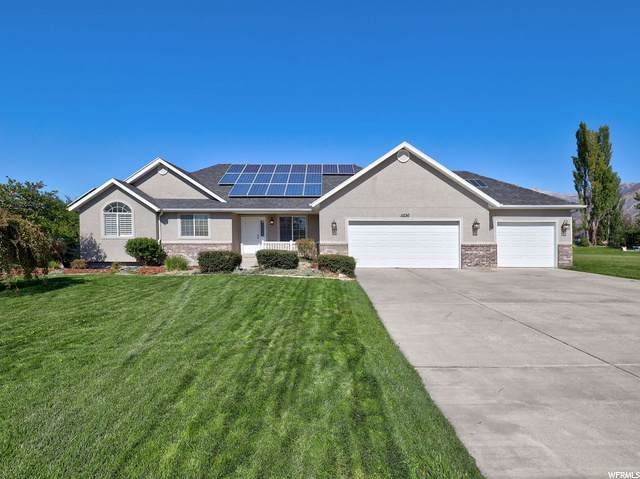 5536 W 11200 N, Highland, UT 84003 (#1704398) :: Colemere Realty Associates
