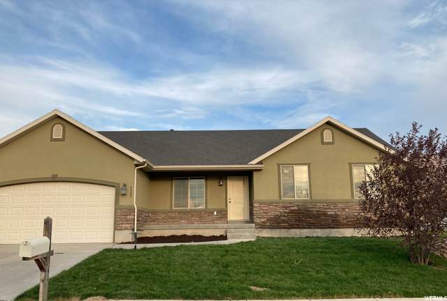 4064 N Shirley Ln, Eagle Mountain, UT 84005 (#1705261) :: McKay Realty