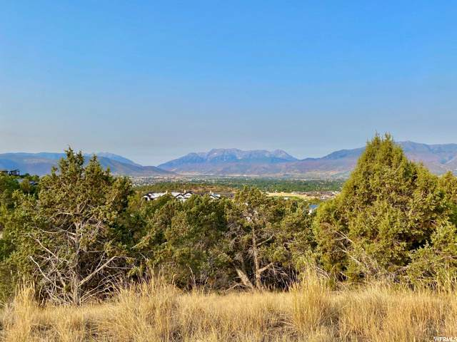 2366 E Flat Top Mountain Dr, Heber City, UT 84032 (#1705492) :: Gurr Real Estate