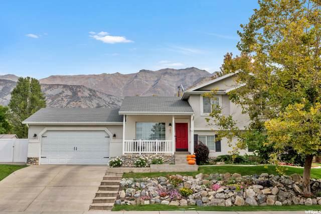 797 S 1100 E, Pleasant Grove, UT 84062 (#1705506) :: Doxey Real Estate Group