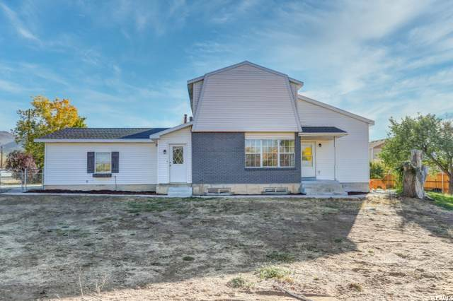 260 E 200 S, Fairview, UT 84629 (#1707785) :: The Perry Group