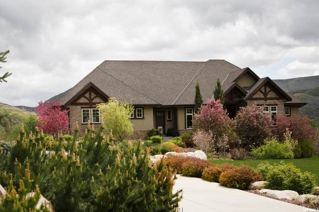 17 N Meadow Dr, Springville, UT 84663 (#1707857) :: The Perry Group