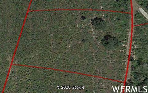 23425 N Thads Peak Cir J-13, Fairview, UT 84629 (#1707902) :: C4 Real Estate Team