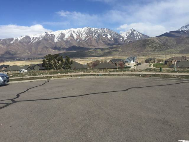 1189 S Valley View Drive, Santaquin, UT 84655 (#1707927) :: RE/MAX Equity