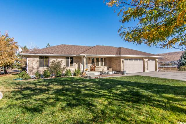 13699 S Shaggy Mountain Rd, Herriman, UT 84096 (#1708221) :: Big Key Real Estate