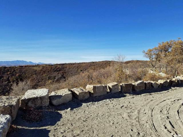 861 S Juniper Drive E, Fairview, UT 84629 (#1708925) :: Gurr Real Estate