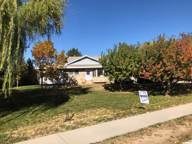263 E 2600 St N, Lehi, UT 84043 (#1709467) :: REALTY ONE GROUP ARETE