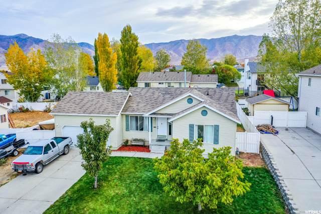 1120 N 450 E, Tooele, UT 84074 (MLS #1709471) :: Lookout Real Estate Group