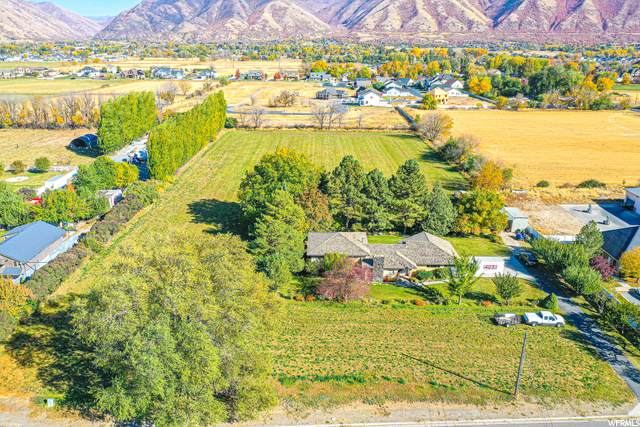 190 N 1600 W, Mapleton, UT 84664 (#1709607) :: The Perry Group