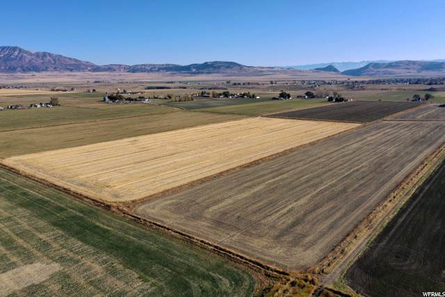 16500 N 5200 W, Riverside, UT 84334 (#1709610) :: The Perry Group