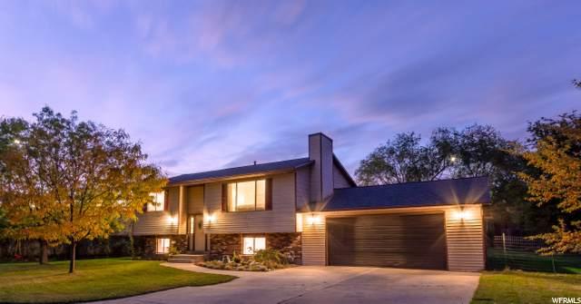 1538 S Carterville Rd, Orem, UT 84097 (#1709751) :: Gurr Real Estate