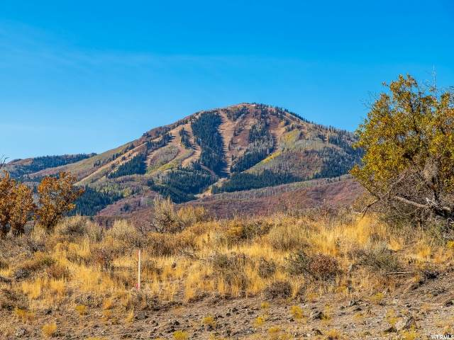 1124 N Gemini Way, Heber City, UT 84032 (#1710120) :: Livingstone Brokers