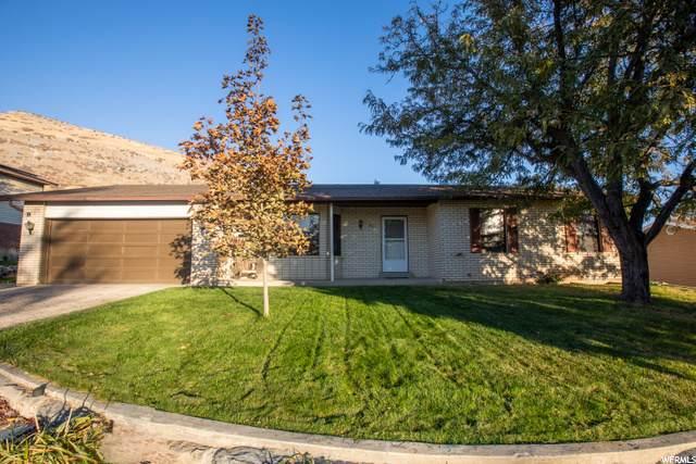 895 S 1550 E, Pleasant Grove, UT 84062 (#1710452) :: Powder Mountain Realty