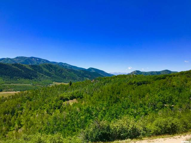 131 Mountain View Rd, Oakley, UT 84055 (MLS #1711191) :: High Country Properties