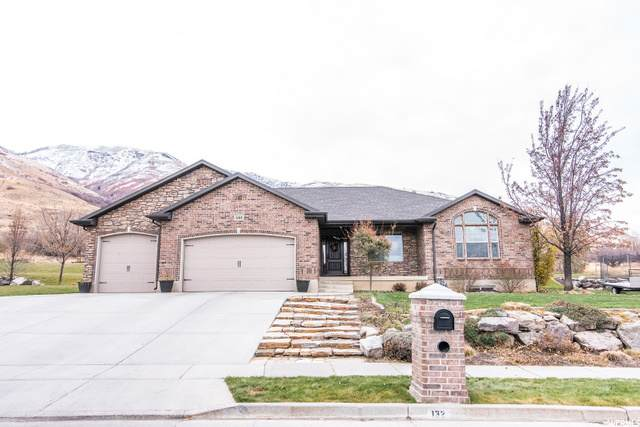 132 Chateau Dr, Perry, UT 84302 (#1712285) :: Big Key Real Estate