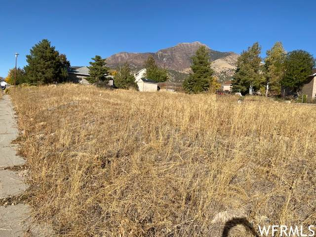 1308 N 600 E, Nephi, UT 84648 (#1712301) :: The Perry Group