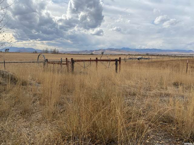 987 W 2000 S, Preston, ID 83263 (#1712309) :: The Perry Group