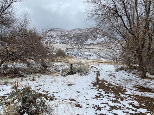1700 Canyon Rd - Photo 1