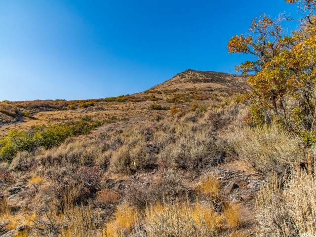 12022 N Gemini Way #173, Heber City, UT 84032 (#1712618) :: Pearson & Associates Real Estate