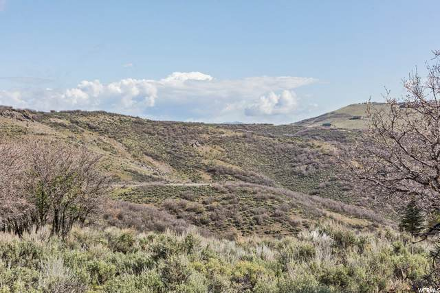 3817 Aspen Camp Loop - Photo 1