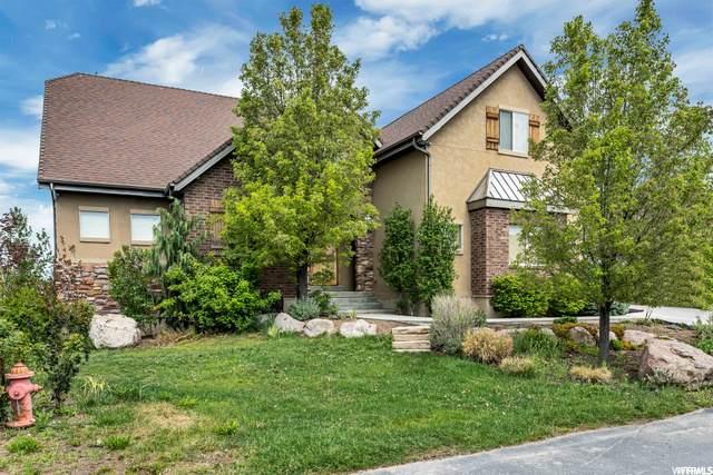 169 E Hollybrook Cv, Draper, UT 84020 (#1713715) :: Bustos Real Estate   Keller Williams Utah Realtors