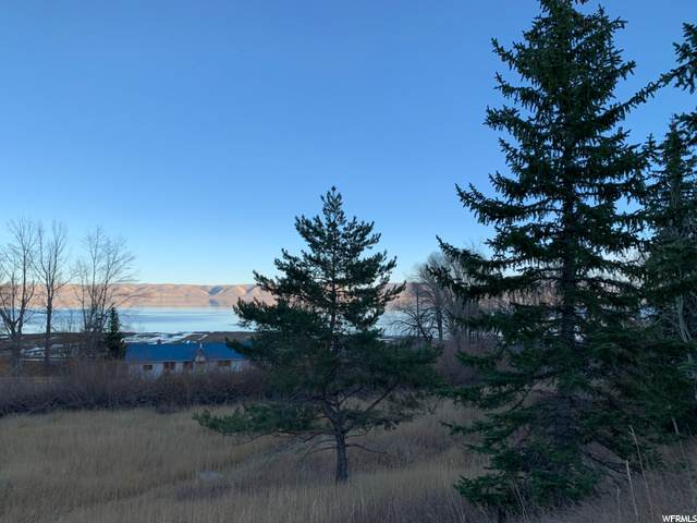 49 Lakeside Dr, Fish Haven, ID 83287 (#1714060) :: The Fields Team