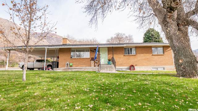 386 N 800 E, Springville, UT 84663 (#1714244) :: Red Sign Team