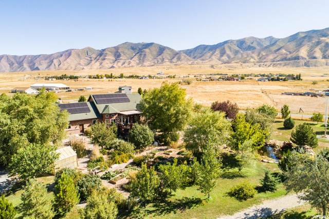 4949 Ashlee Way, Erda, UT 84074 (#1714785) :: Colemere Realty Associates