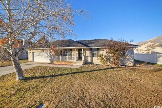 925 E Murdock Dr N #10, American Fork, UT 84003 (#1715470) :: Berkshire Hathaway HomeServices Elite Real Estate