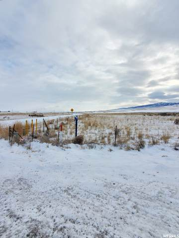 6450 W 20800 N, Plymouth, UT 84330 (MLS #1716764) :: Summit Sotheby's International Realty