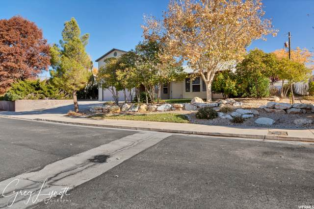 266 Prickley Pear Dr - Photo 1