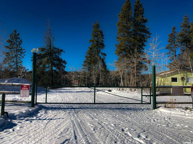 208 Pine Plateau, Kamas, UT 84036 (MLS #1717965) :: Summit Sotheby's International Realty